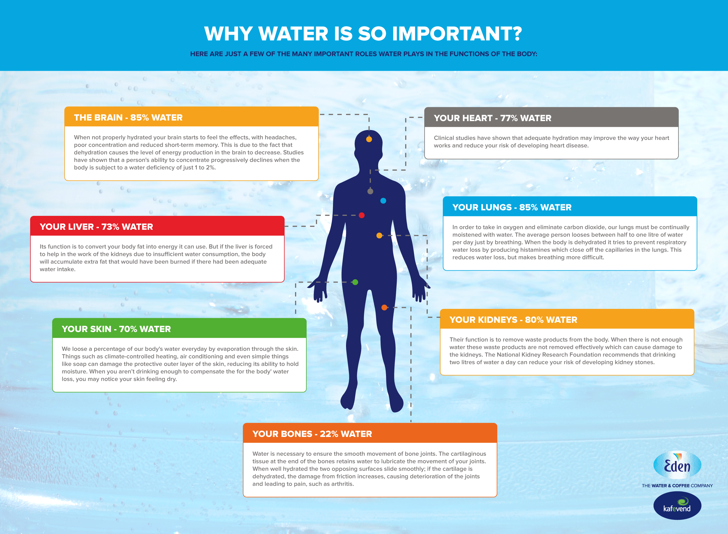 why water is so important? | eden springs